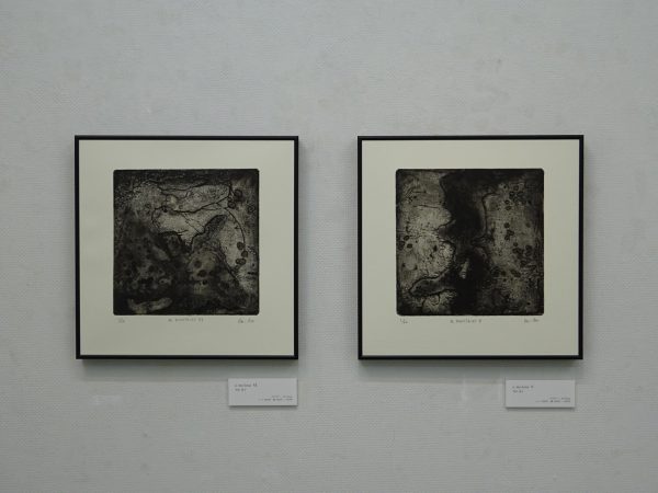 NishizumiKeiko201805